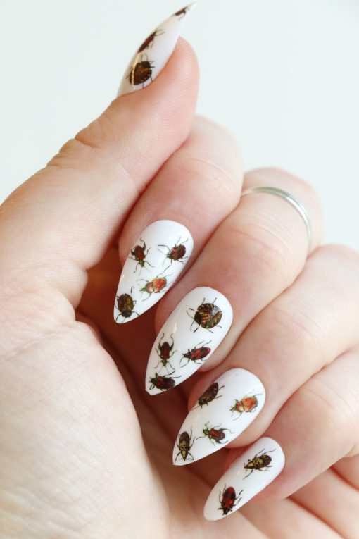 beetle nail decals / bug nail stickers